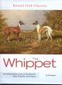 whippet-bengston-2010