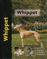 whippet-cunliff